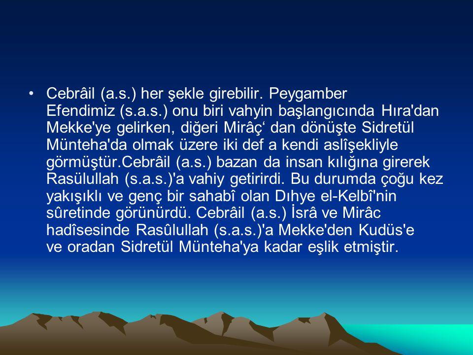 Cebrâil (a.s.) her şekle girebilir. Peygamber Efendimiz (s.a.s.) onu biri vahyin başlangıcında Hıra'dan Mekke'ye gelirken, diğeri Mirâç' dan dönüşte S