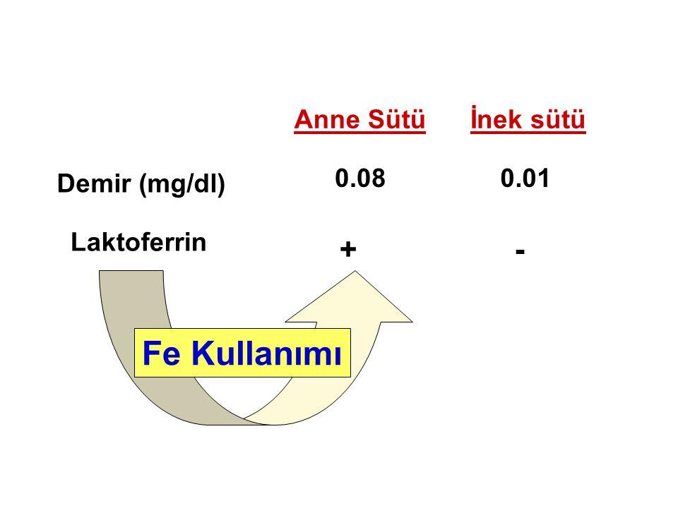 Demir (mg/dl) Laktoferrin +- 0.08 Anne Sütüİnek sütü 0.01 Fe Kullanımı