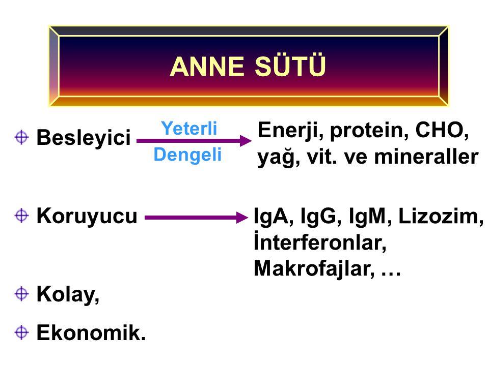 Protein Yağ CHO Vitaminler Mineraller