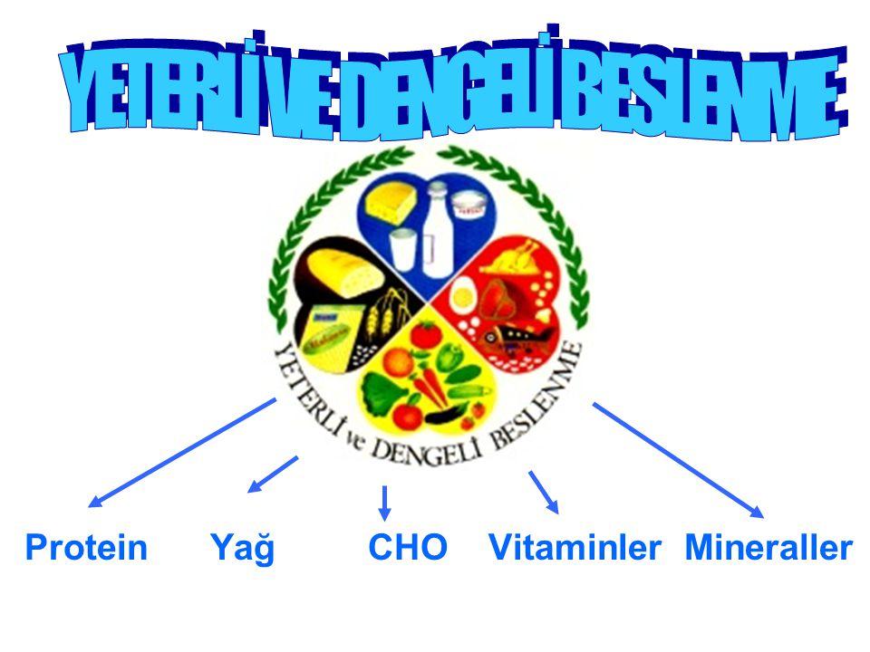TİAMİN ( B 1 Vit.) Yetersizliğinde Sinir ve sindirim sist.