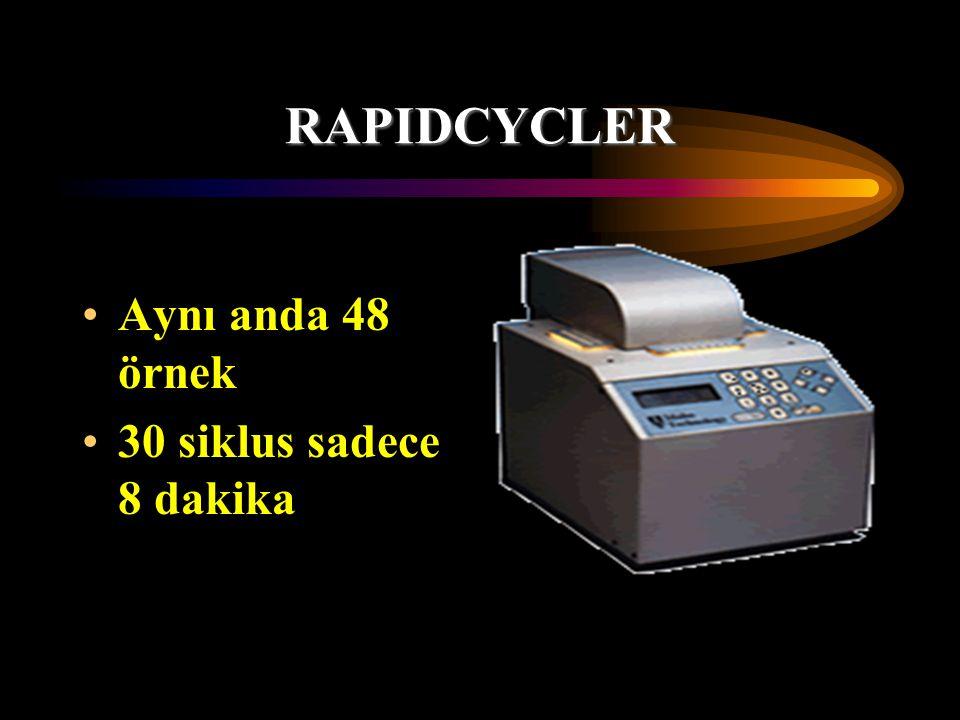 RAPIDCYCLER Aynı anda 48 örnek 30 siklus sadece 8 dakika