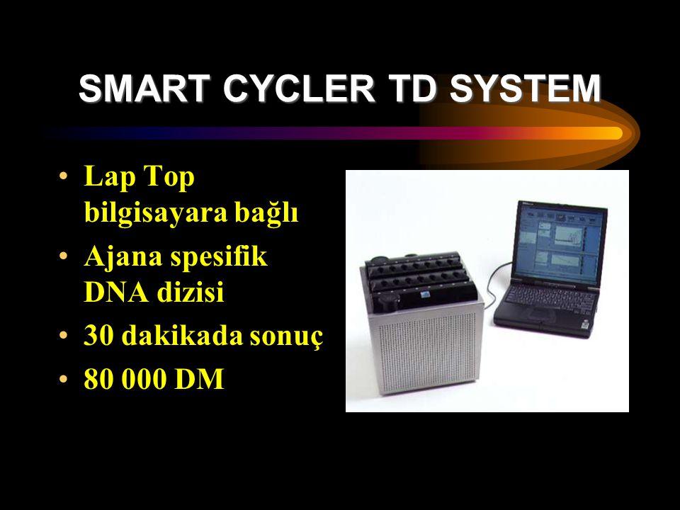 SMART CYCLER TD SYSTEM Lap Top bilgisayara bağlı Ajana spesifik DNA dizisi 30 dakikada sonuç 80 000 DM
