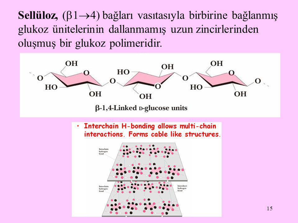 15 Sellüloz, (  1  4) bağları vasıtasıyla birbirine bağlanmış glukoz ünitelerinin dallanmamış uzun zincirlerinden oluşmuş bir glukoz polimeridir.