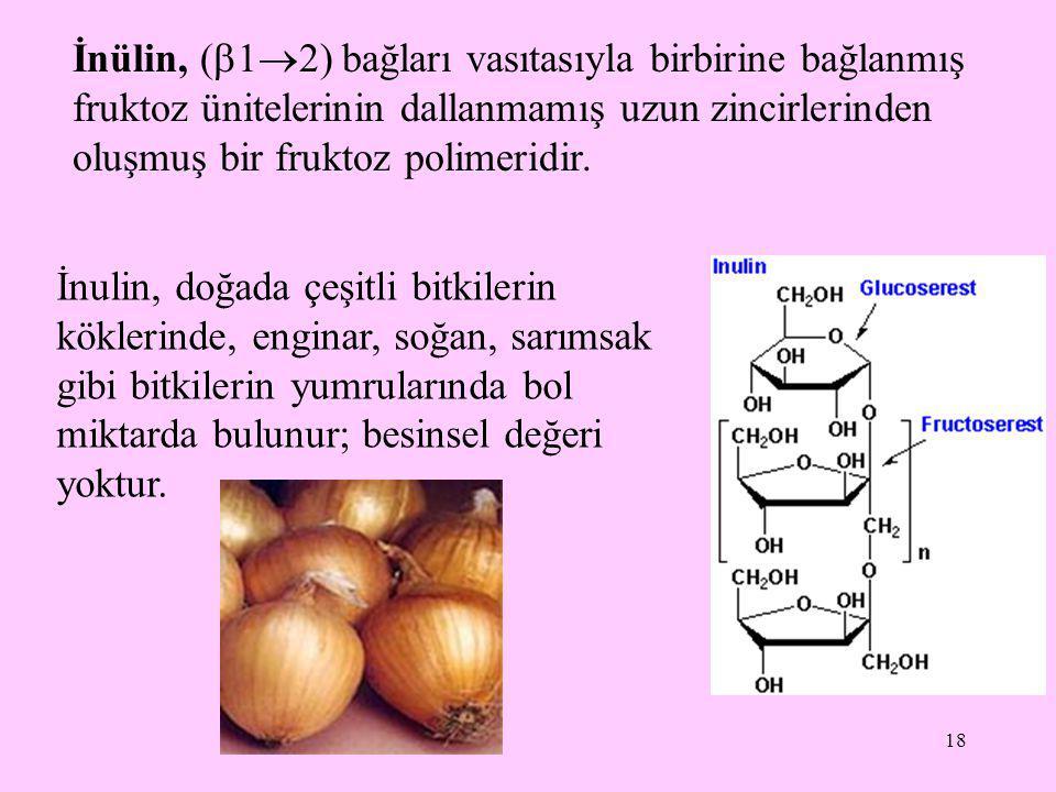 18 İnülin, (  1  2) bağları vasıtasıyla birbirine bağlanmış fruktoz ünitelerinin dallanmamış uzun zincirlerinden oluşmuş bir fruktoz polimeridir. İn