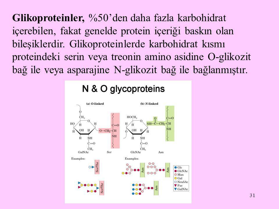 31 Glikoproteinler, %50'den daha fazla karbohidrat içerebilen, fakat genelde protein içeriği baskın olan bileşiklerdir. Glikoproteinlerde karbohidrat