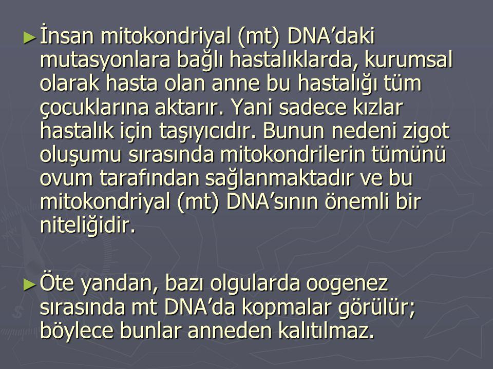 ► İnsan mitokondriyal (mt) DNA'daki mutasyonlara bağlı hastalıklarda, kurumsal olarak hasta olan anne bu hastalığı tüm çocuklarına aktarır.