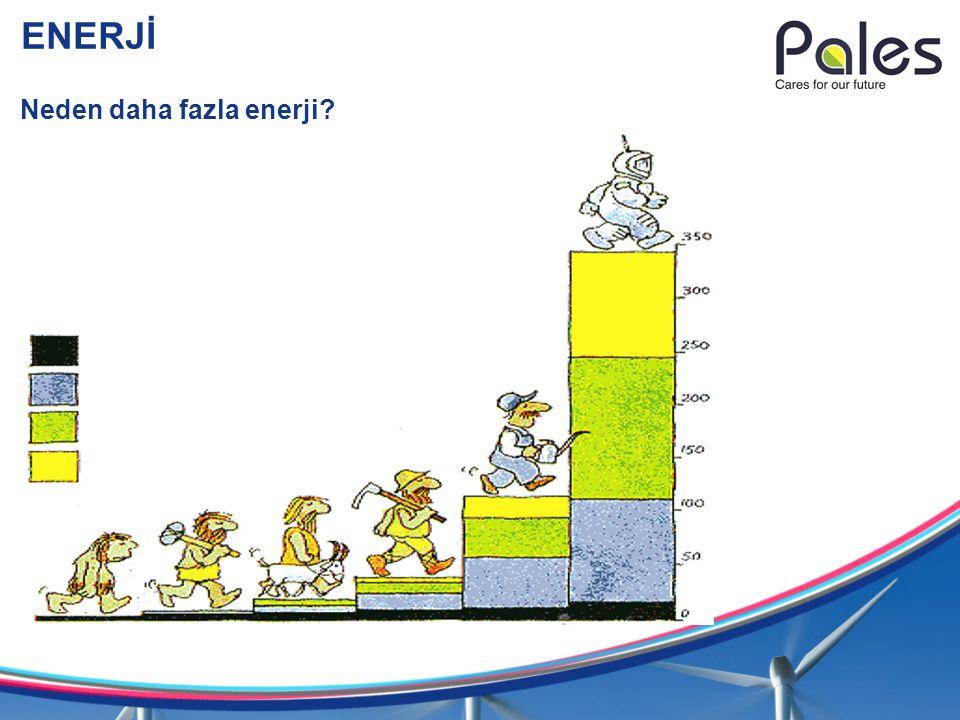 ENERJİ Neden daha fazla enerji?