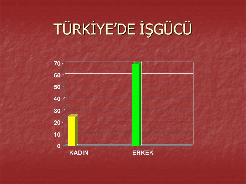 TÜRKİYE'DE İŞGÜCÜ