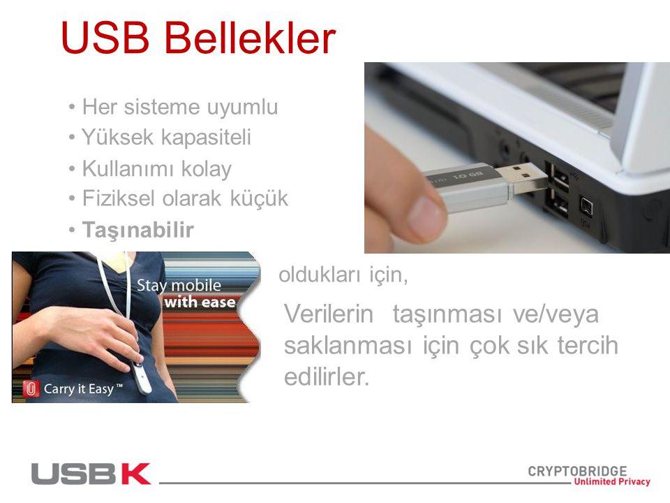 Güvende olabilir misiniz.Şirketlerin %86'sında,verinin taşınması için USB Bellekler kullanılır.