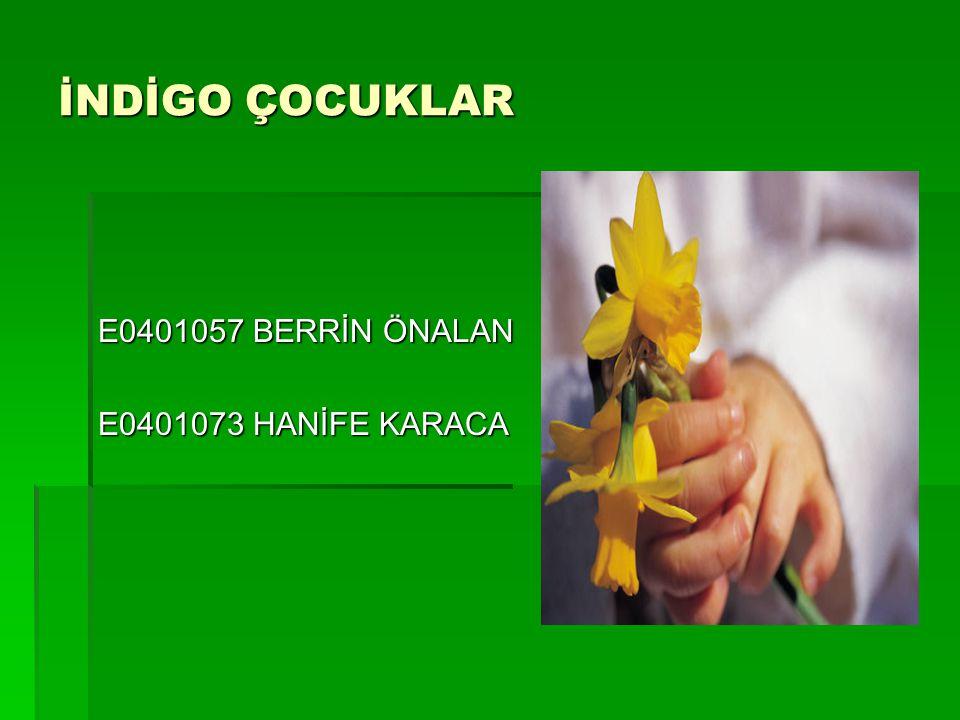 İNDİGO ÇOCUKLAR E0401057 BERRİN ÖNALAN E0401073 HANİFE KARACA