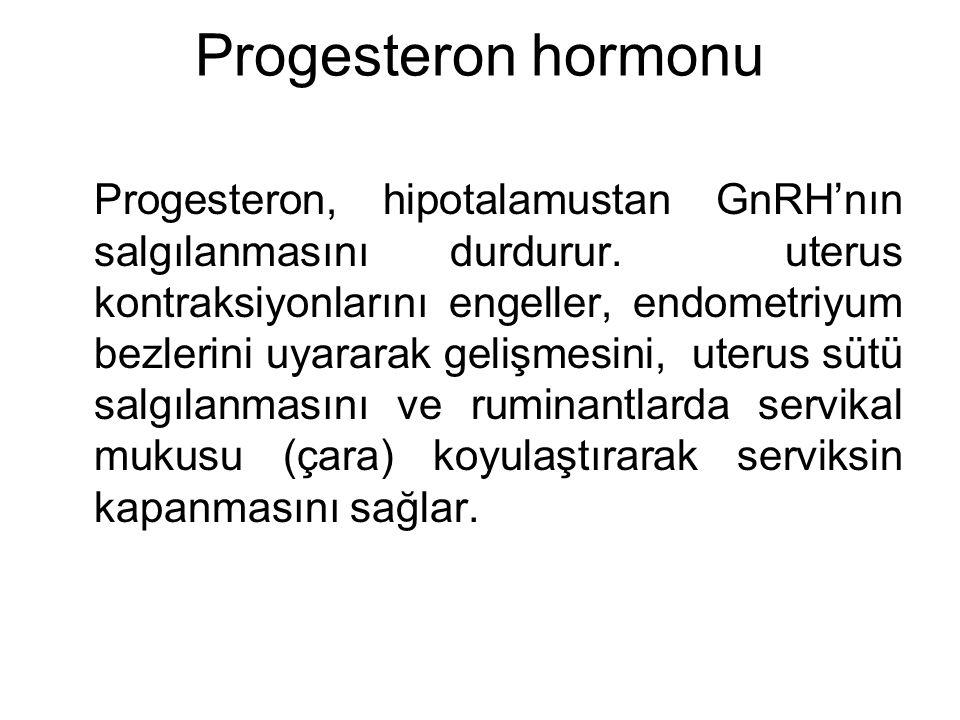 Progesteron hormonu Progesteron, hipotalamustan GnRH'nın salgılanmasını durdurur. uterus kontraksiyonlarını engeller, endometriyum bezlerini uyararak