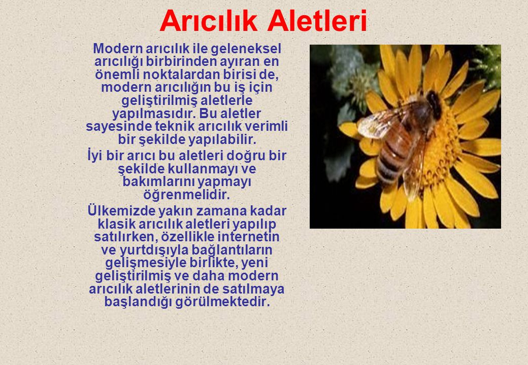 ARICI FIRÇASI Arıcı fırçası petek üzerindeki arıları zarar vermeden uzaklaştırmaya yarar.