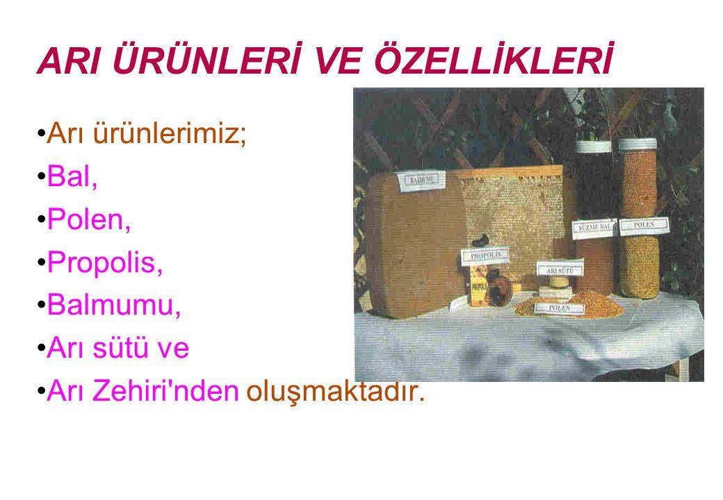 ARI ÜRÜNLERİ VE ÖZELLİKLERİ Arı ürünlerimiz; Bal, Polen, Propolis, Balmumu, Arı sütü ve Arı Zehiri nden oluşmaktadır.