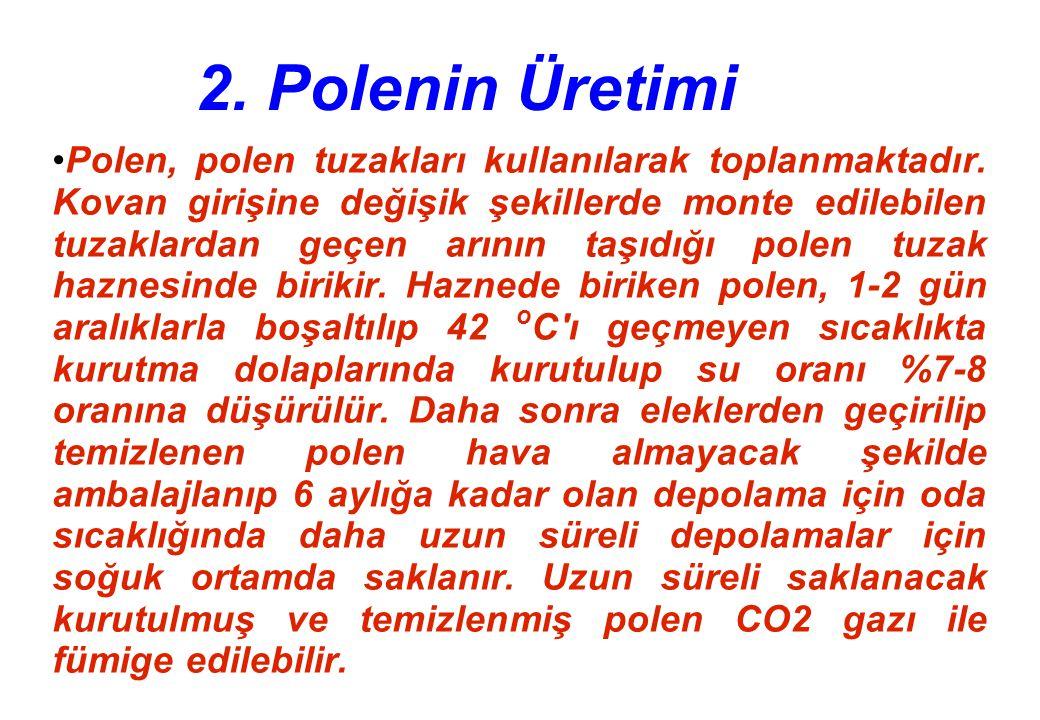 2. Polenin Üretimi Polen, polen tuzakları kullanılarak toplanmaktadır.