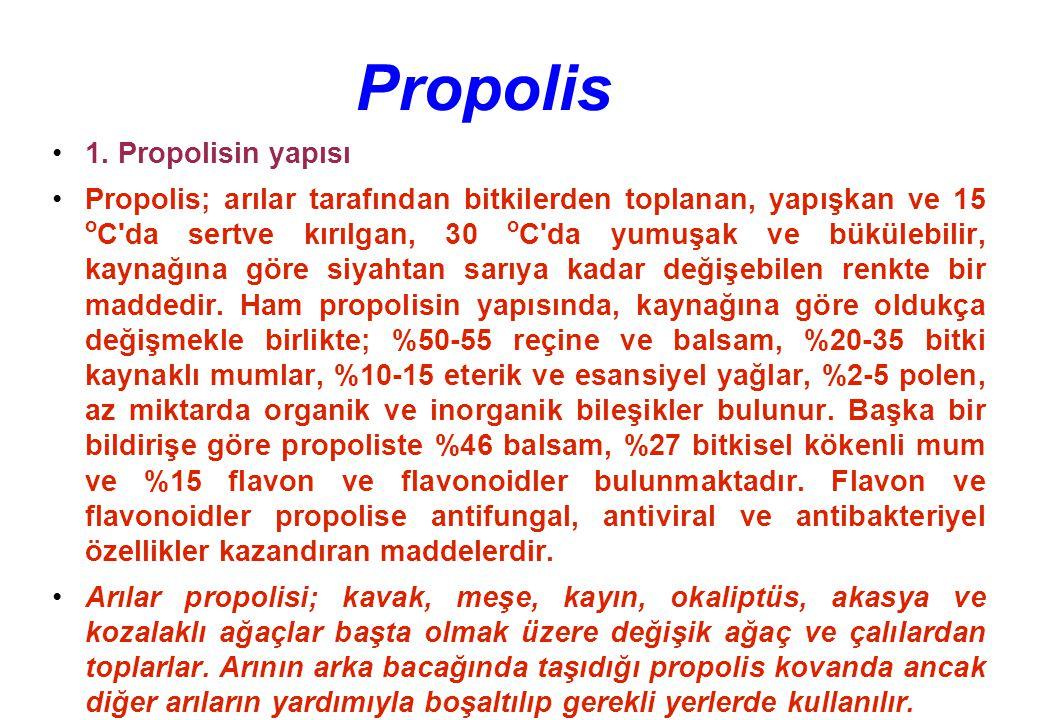 Propolis 1.
