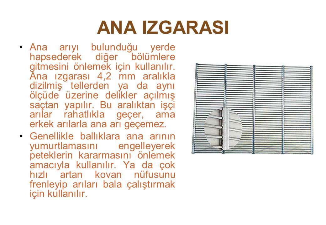 ANA IZGARASI Ana arıyı bulunduğu yerde hapsederek diğer bölümlere gitmesini önlemek için kullanılır.
