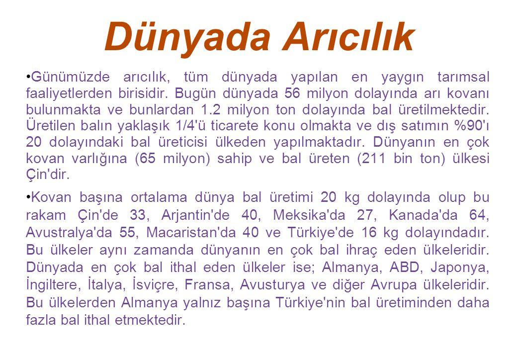 Yakı Otu Bu bitkinin 21 türü Türkiye de yetişmektedir.