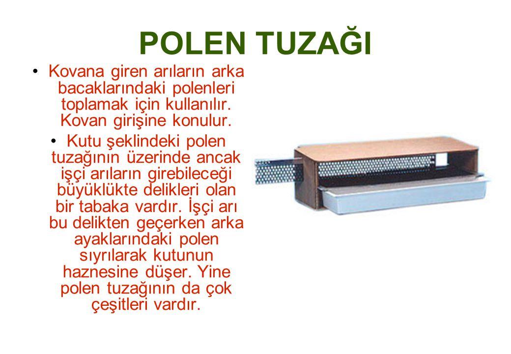 POLEN TUZAĞI Kovana giren arıların arka bacaklarındaki polenleri toplamak için kullanılır.