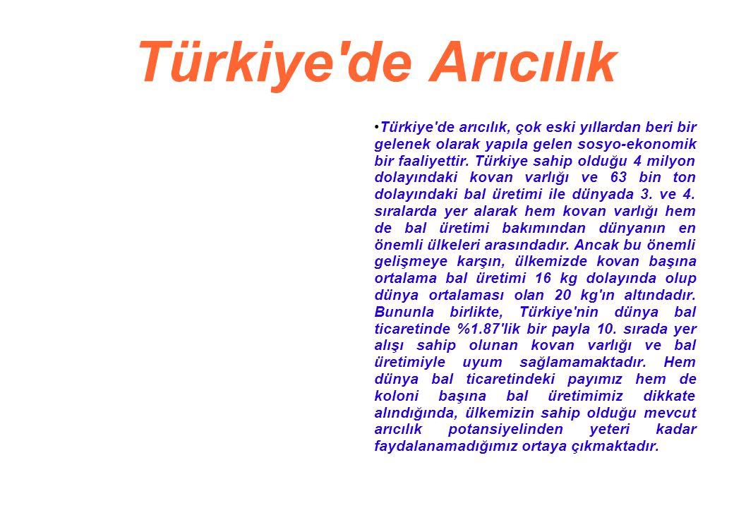 Türkiye de Arıcılık Türkiye de arıcılık, çok eski yıllardan beri bir gelenek olarak yapıla gelen sosyo-ekonomik bir faaliyettir.