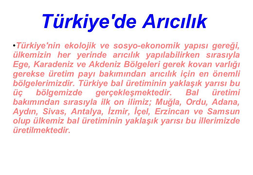 Türkiye de Arıcılık Türkiye nin ekolojik ve sosyo-ekonomik yapısı gereği, ülkemizin her yerinde arıcılık yapılabilirken sırasıyla Ege, Karadeniz ve Akdeniz Bölgeleri gerek kovan varlığı gerekse üretim payı bakımından arıcılık için en önemli bölgelerimizdir.