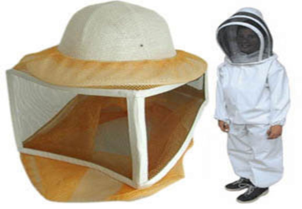 İşçi arıların 7.