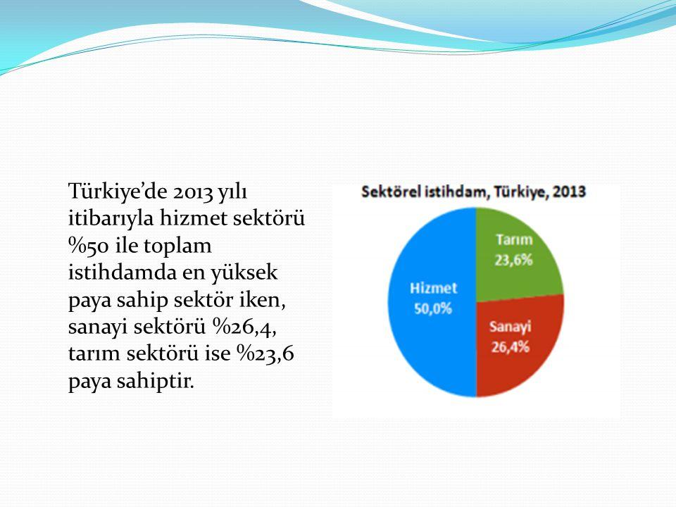 Türkiye'de 2013 yılı itibarıyla hizmet sektörü %50 ile toplam istihdamda en yüksek paya sahip sektör iken, sanayi sektörü %26,4, tarım sektörü ise %23