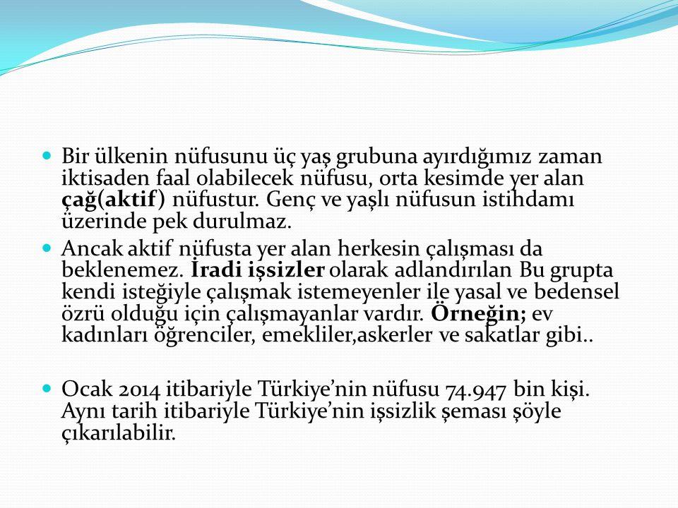 Türkiye'nin sosyo-ekonomik yapısının işsizliği gizlemeye elverişli olması Tarım sektöründe istihdam edilenler arasında ücretsiz aile işçiliğinin yaygın oluşu da işsizlik oranının küçük çıkmasına yol açmaktadır.