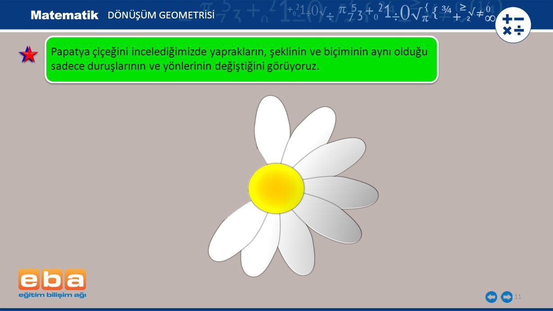 11 DÖNÜŞÜM GEOMETRİSİ Papatya çiçeğini incelediğimizde yaprakların, şeklinin ve biçiminin aynı olduğu sadece duruşlarının ve yönlerinin değiştiğini görüyoruz.