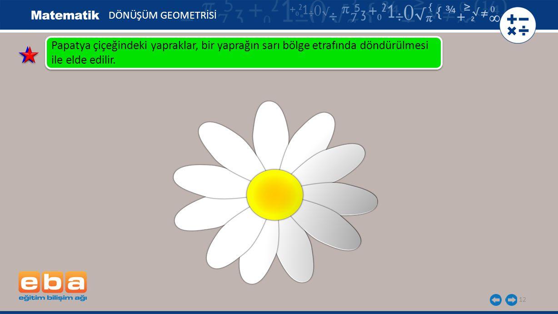 12 DÖNÜŞÜM GEOMETRİSİ Papatya çiçeğindeki yapraklar, bir yaprağın sarı bölge etrafında döndürülmesi ile elde edilir.