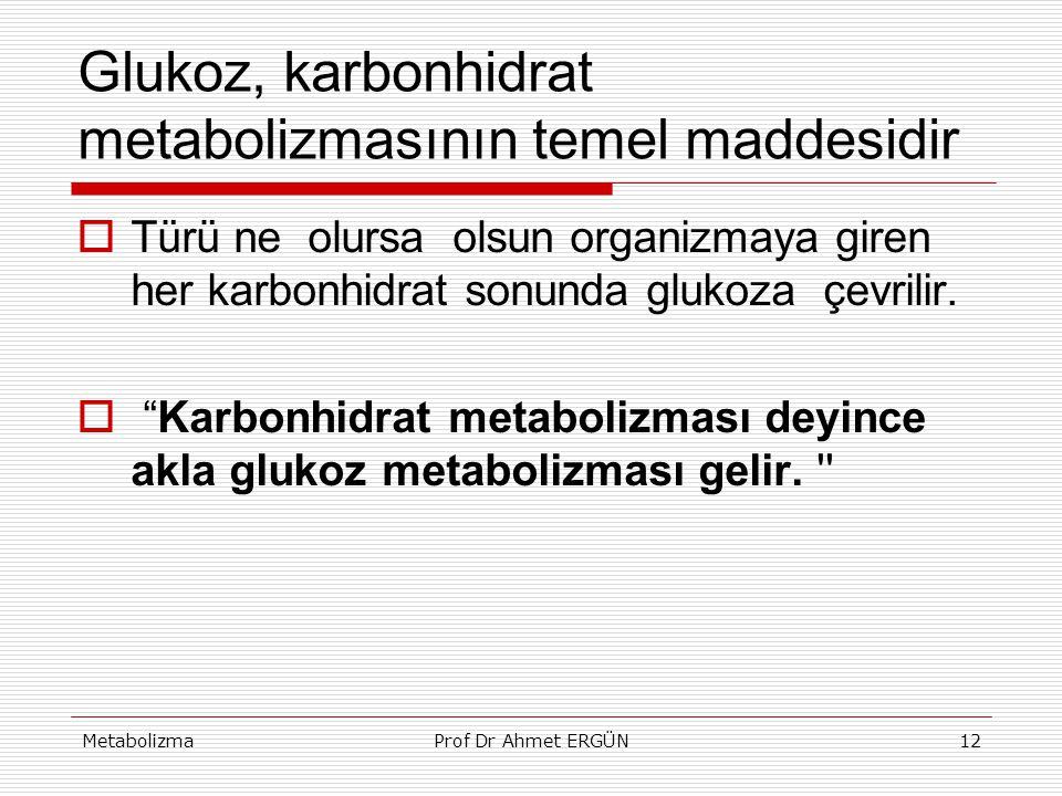 MetabolizmaProf Dr Ahmet ERGÜN12 Glukoz, karbonhidrat metabolizmasının temel maddesidir  Türü ne olursa olsun organizmaya giren her karbonhidrat sonu
