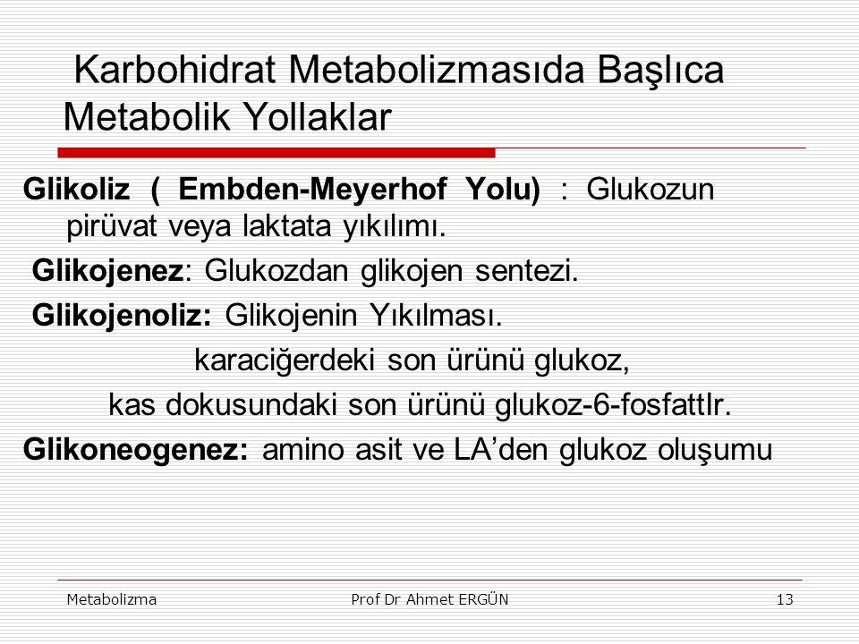 MetabolizmaProf Dr Ahmet ERGÜN13 Karbohidrat Metabolizmasıda Başlıca Metabolik Yollaklar Glikoliz ( Embden-Meyerhof Yolu) : Glukozun pirüvat veya lakt