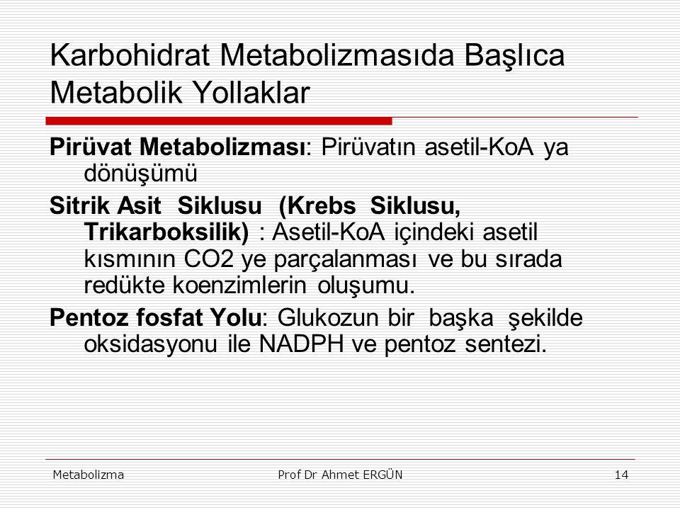 MetabolizmaProf Dr Ahmet ERGÜN14 Karbohidrat Metabolizmasıda Başlıca Metabolik Yollaklar Pirüvat Metabolizması: Pirüvatın asetil-KoA ya dönüşümü Sitri
