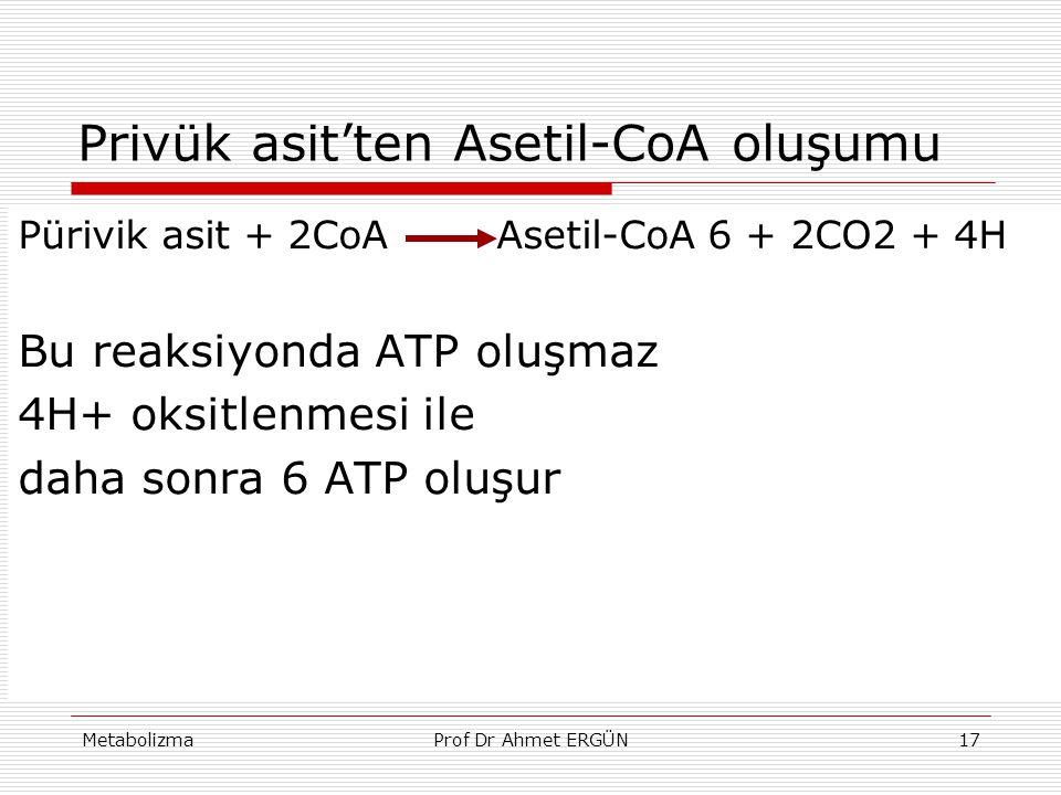 MetabolizmaProf Dr Ahmet ERGÜN17 Privük asit'ten Asetil-CoA oluşumu Pürivik asit + 2CoA Asetil-CoA 6 + 2CO2 + 4H Bu reaksiyonda ATP oluşmaz 4H+ oksitl