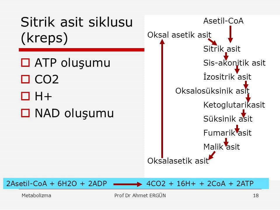 MetabolizmaProf Dr Ahmet ERGÜN18 Sitrik asit siklusu (kreps)  ATP oluşumu  CO2  H+  NAD oluşumu Asetil-CoA Oksal asetik asit Sitrik asit Sis-akoni