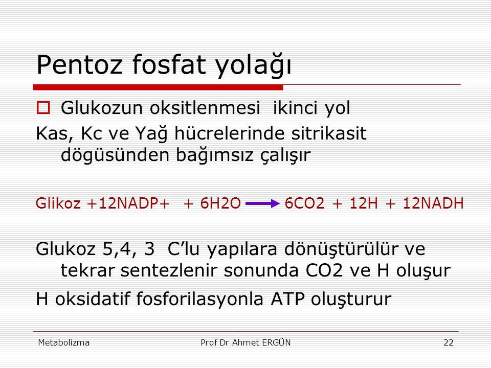 MetabolizmaProf Dr Ahmet ERGÜN22 Pentoz fosfat yolağı  Glukozun oksitlenmesi ikinci yol Kas, Kc ve Yağ hücrelerinde sitrikasit dögüsünden bağımsız ça