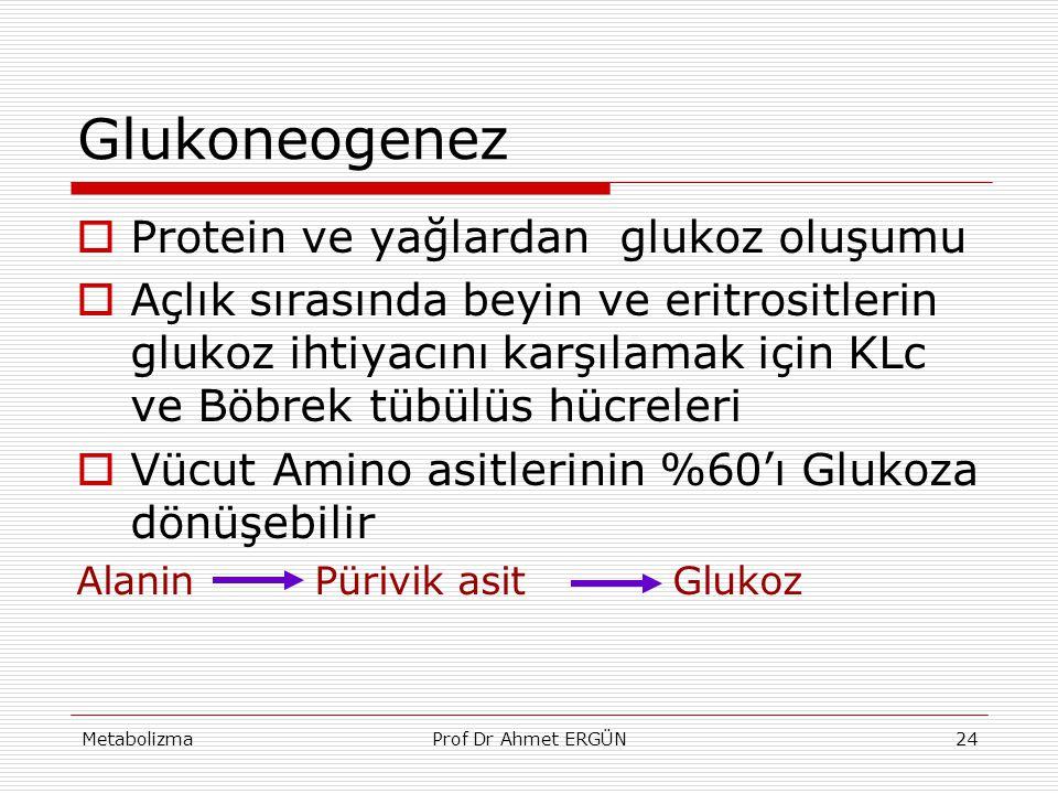 MetabolizmaProf Dr Ahmet ERGÜN24 Glukoneogenez  Protein ve yağlardan glukoz oluşumu  Açlık sırasında beyin ve eritrositlerin glukoz ihtiyacını karşı