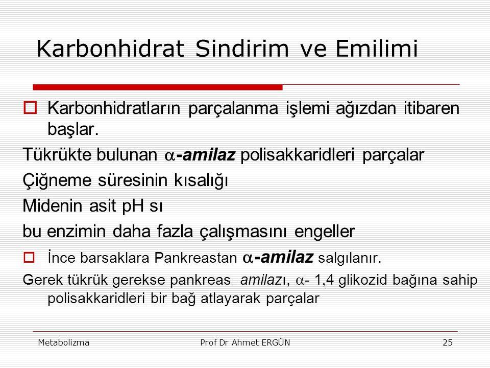 MetabolizmaProf Dr Ahmet ERGÜN25 Karbonhidrat Sindirim ve Emilimi  Karbonhidratların parçalanma işlemi ağızdan itibaren başlar. Tükrükte bulunan  -a