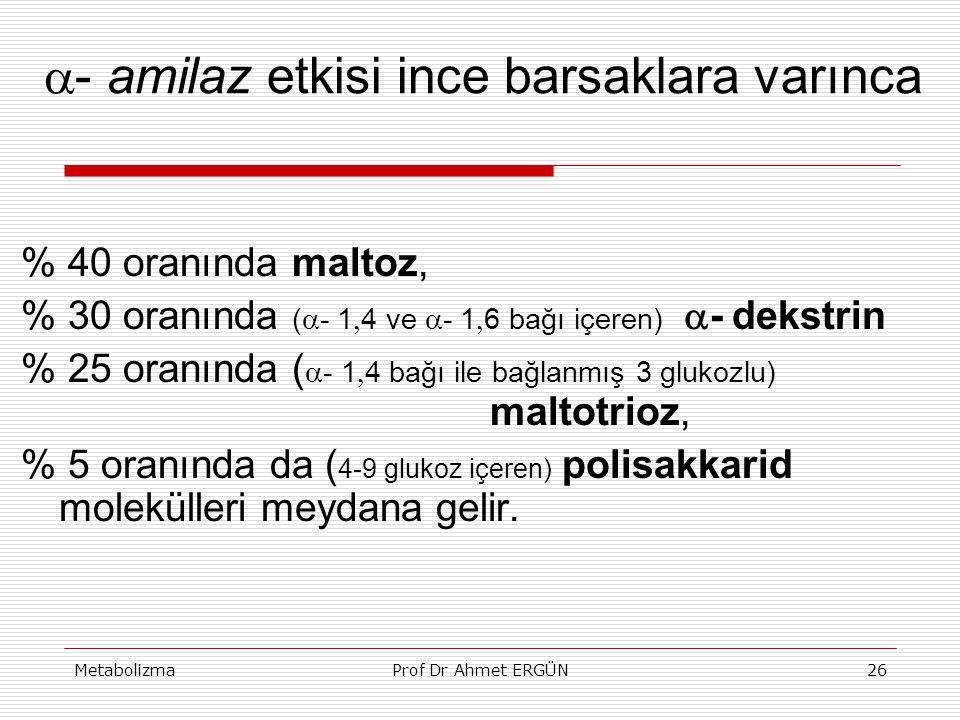 MetabolizmaProf Dr Ahmet ERGÜN26  - amilaz etkisi ince barsaklara varınca % 40 oranında maltoz, % 30 oranında (  -  1  4 ve  -  1  6 bağı içere