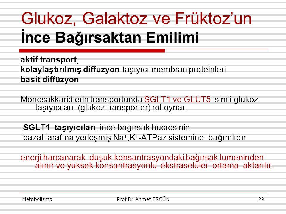 MetabolizmaProf Dr Ahmet ERGÜN29 Glukoz, Galaktoz ve Früktoz'un İnce Bağırsaktan Emilimi aktif transport, kolaylaştırılmış diffüzyon taşıyıcı membran