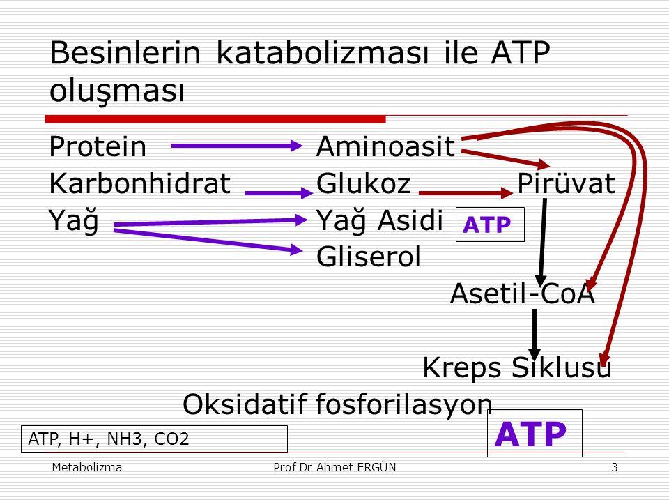 MetabolizmaProf Dr Ahmet ERGÜN3 Besinlerin katabolizması ile ATP oluşması Protein Aminoasit KarbonhidratGlukozPirüvat Yağ Yağ Asidi Gliserol Asetil-Co