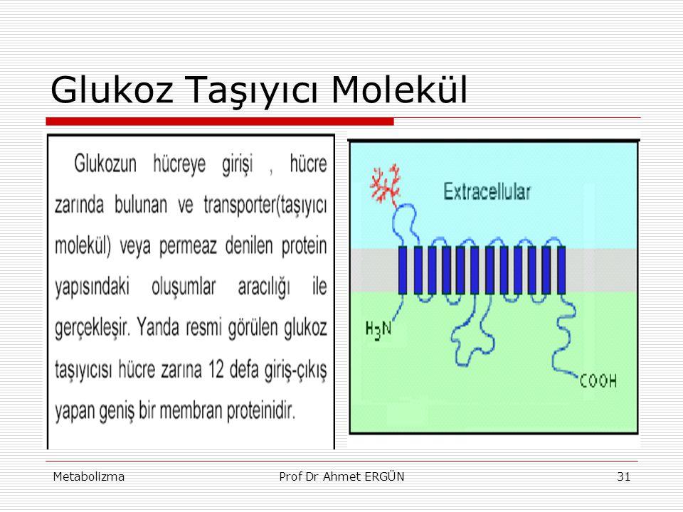 MetabolizmaProf Dr Ahmet ERGÜN31 Glukoz Taşıyıcı Molekül