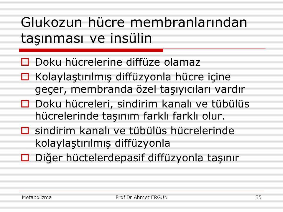 MetabolizmaProf Dr Ahmet ERGÜN35 Glukozun hücre membranlarından taşınması ve insülin  Doku hücrelerine diffüze olamaz  Kolaylaştırılmış diffüzyonla