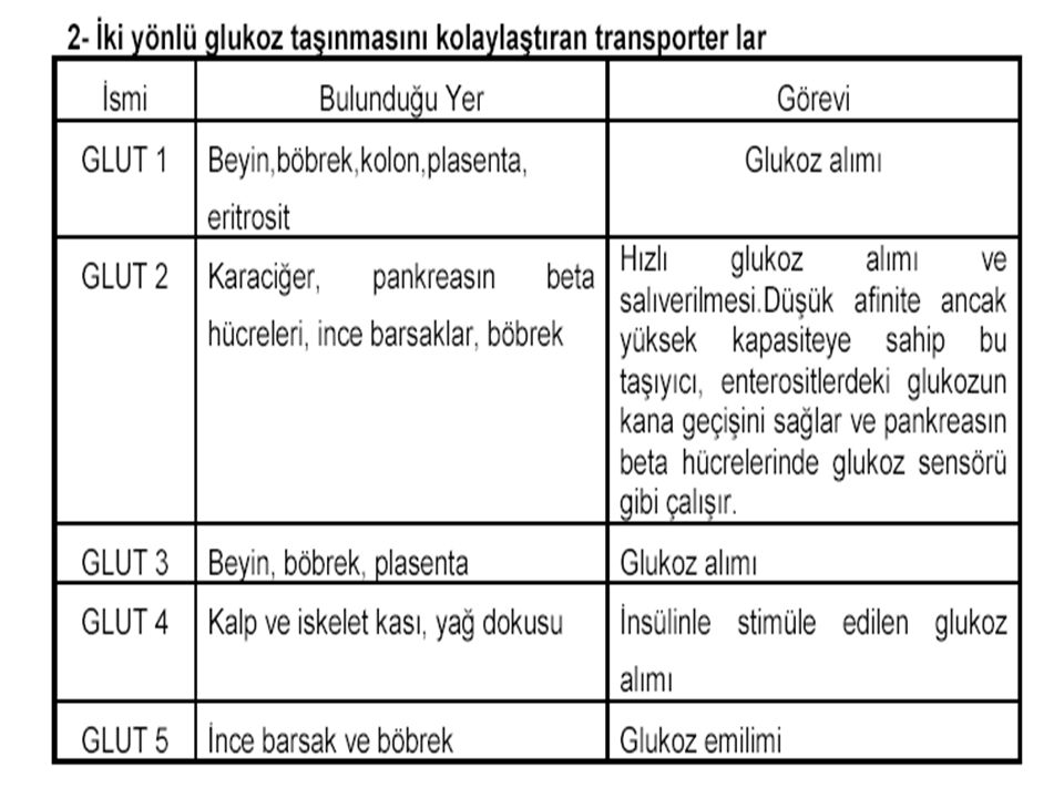 MetabolizmaProf Dr Ahmet ERGÜN38