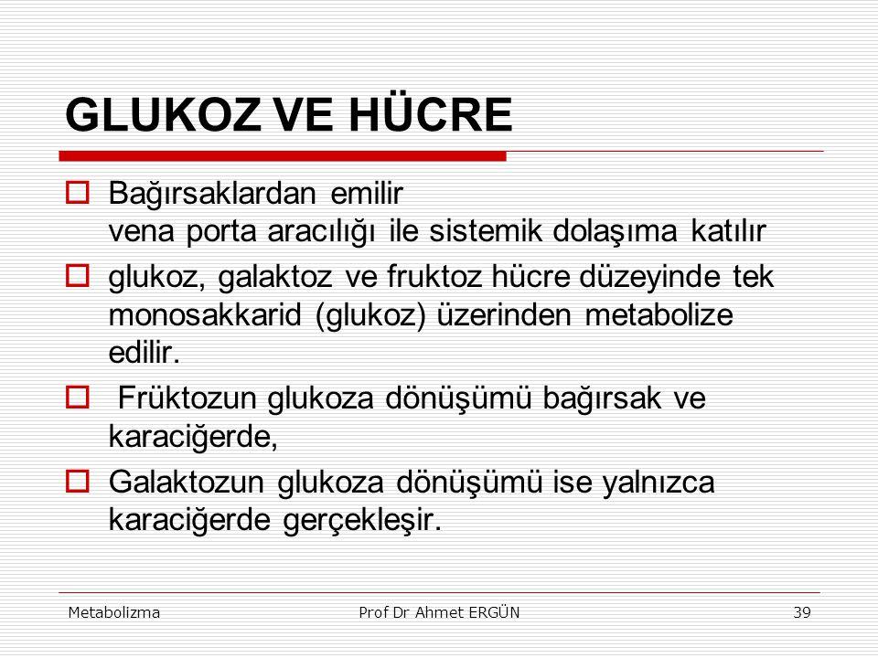 MetabolizmaProf Dr Ahmet ERGÜN39 GLUKOZ VE HÜCRE  Bağırsaklardan emilir vena porta aracılığı ile sistemik dolaşıma katılır  glukoz, galaktoz ve fruk