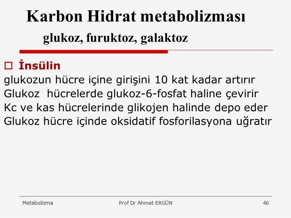 MetabolizmaProf Dr Ahmet ERGÜN46 Karbon Hidrat metabolizması glukoz, furuktoz, galaktoz  İnsülin glukozun hücre içine girişini 10 kat kadar artırır G