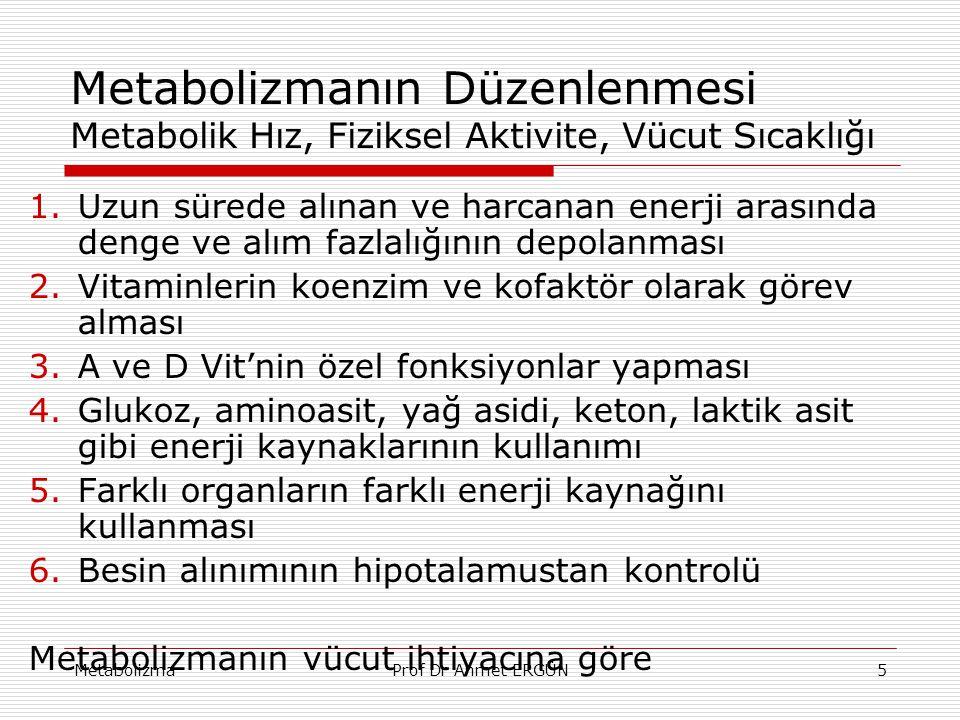 MetabolizmaProf Dr Ahmet ERGÜN5 Metabolizmanın Düzenlenmesi Metabolik Hız, Fiziksel Aktivite, Vücut Sıcaklığı 1.Uzun sürede alınan ve harcanan enerji