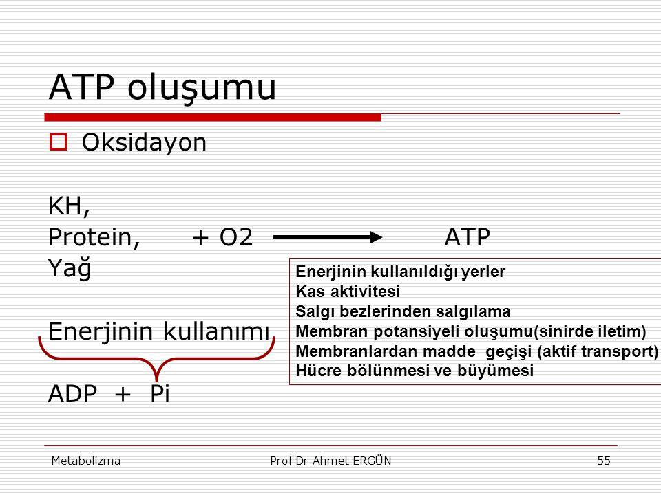 MetabolizmaProf Dr Ahmet ERGÜN55 ATP oluşumu  Oksidayon KH, Protein, + O2 ATP Yağ Enerjinin kullanımı ADP + Pi Enerjinin kullanıldığı yerler Kas akti