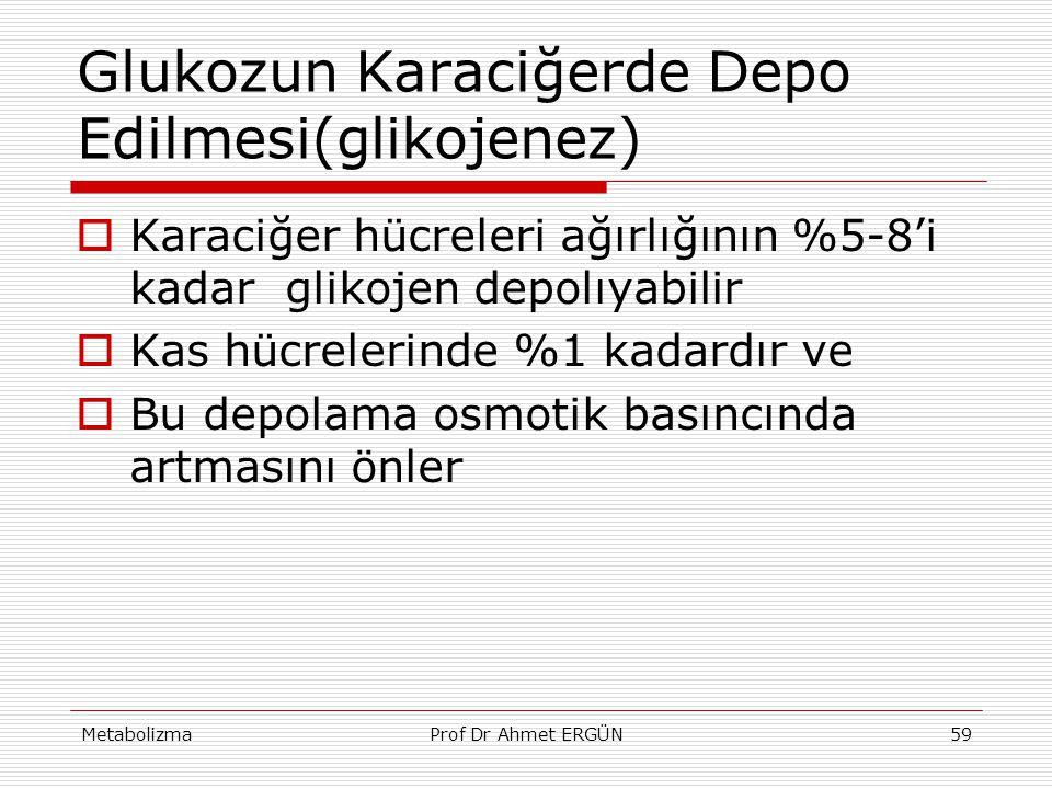 MetabolizmaProf Dr Ahmet ERGÜN59  Karaciğer hücreleri ağırlığının %5-8'i kadar glikojen depolıyabilir  Kas hücrelerinde %1 kadardır ve  Bu depolama