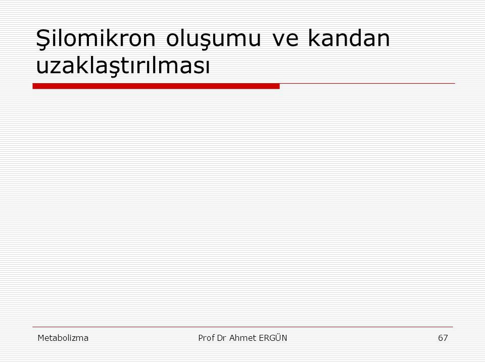 MetabolizmaProf Dr Ahmet ERGÜN67 Şilomikron oluşumu ve kandan uzaklaştırılması