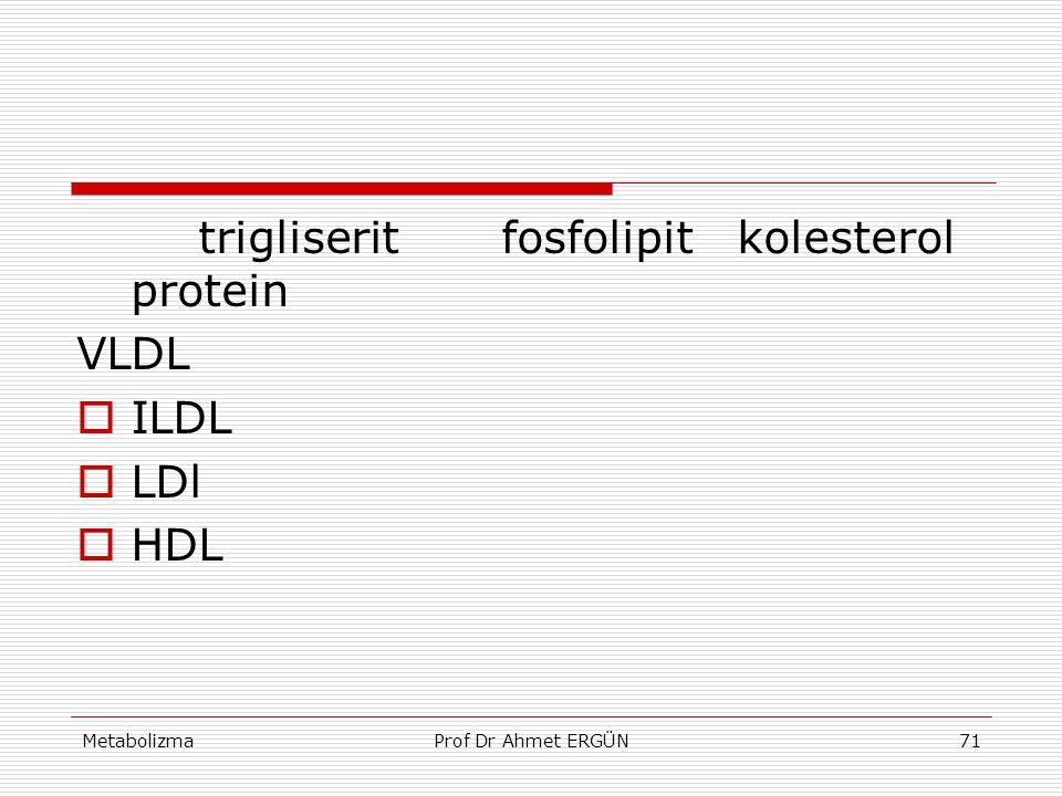 MetabolizmaProf Dr Ahmet ERGÜN71 trigliserit fosfolipit kolesterol protein VLDL  ILDL  LDl  HDL